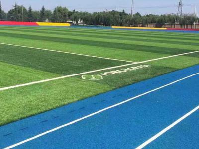 Campus Soccer Artificial Turf