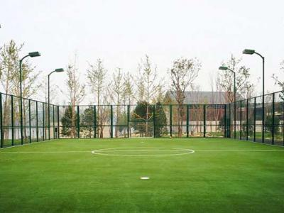 Pelouse artificielle pour terrain de football en cage
